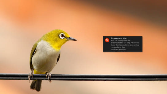 "A yellow bird looking at a Windows error dialog saying ""Reconnect your drive. Your File History Drive was disconnected for too long. Reconnect it."""