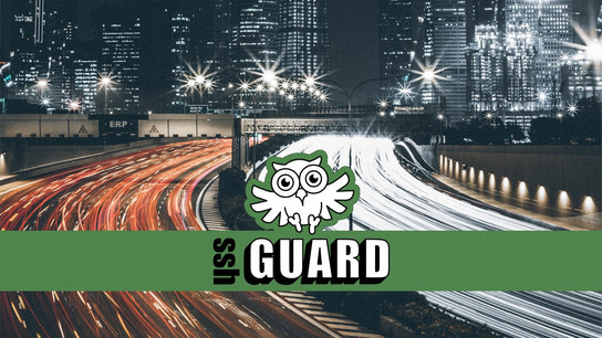 The SSHGuard swooping-owl logo in front of a highway.
