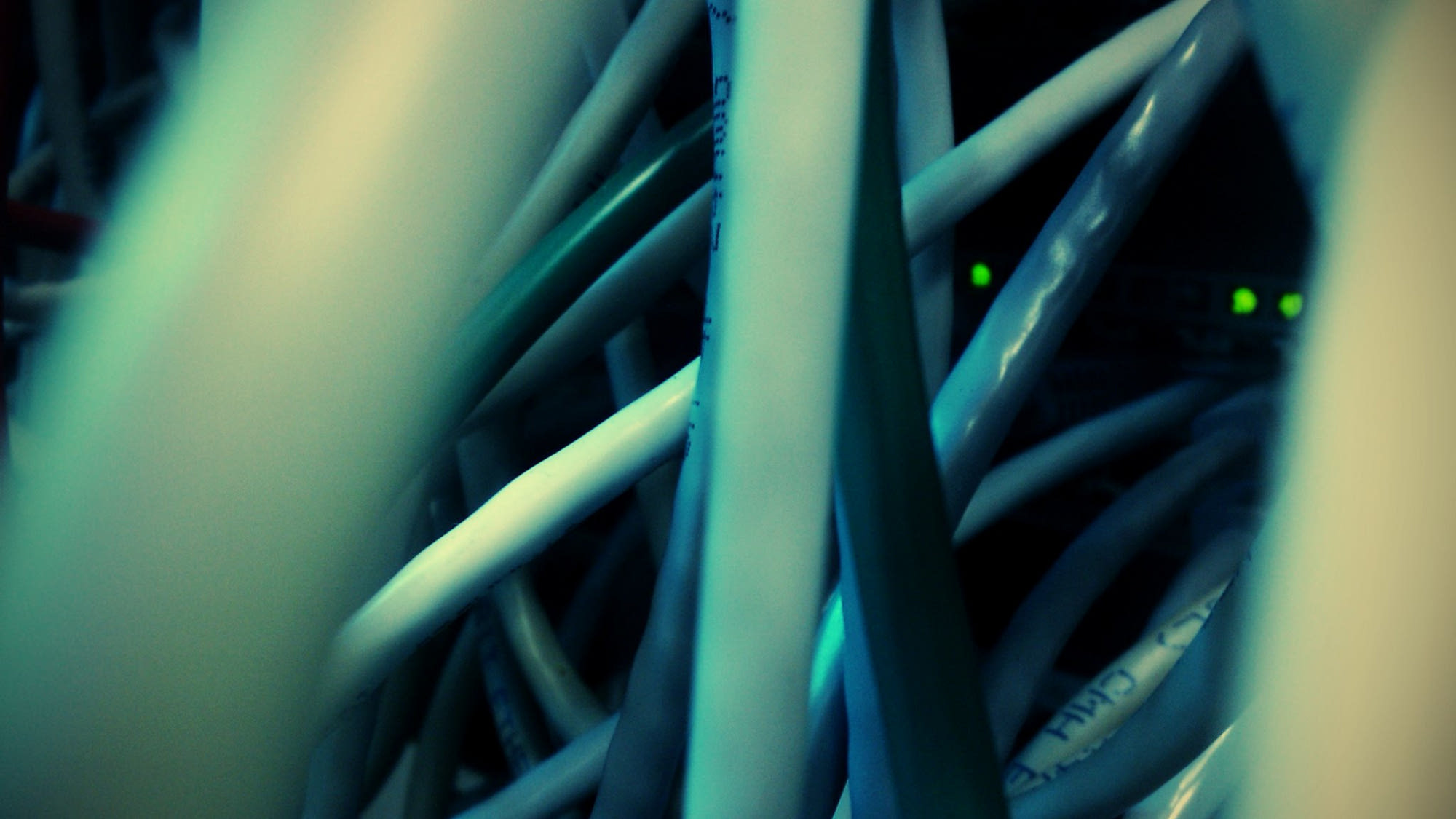 "Eyes are watching deep in the jungle – Green LEDs ""looking out"" from behind network cables."